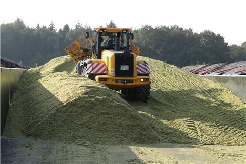 Mais-Silage kann giftiges Gas bilden